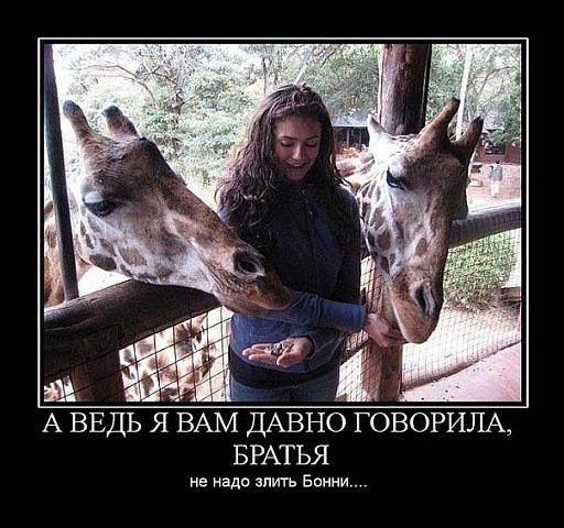http://cs4971.vkontakte.ru/u12341118/116642657/x_e373cef8.jpg